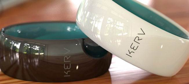 Kerv: The ring for your contactless