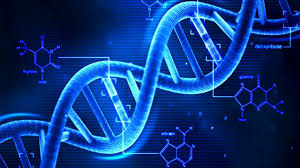 O πρώτος μουσικός δίσκος που αποθηκεύθηκε μέσα σε DNA